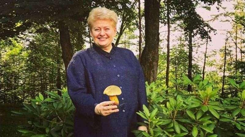 Литовские элиты проганяют Далю Грибаускайте на пенсию