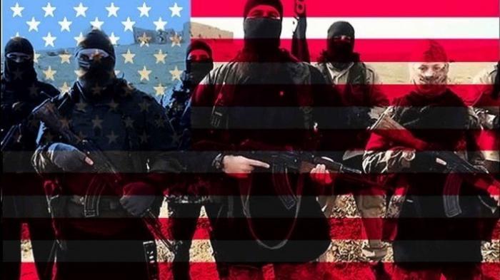 В Сирии вскрыты факты прямой поддержки США террористов