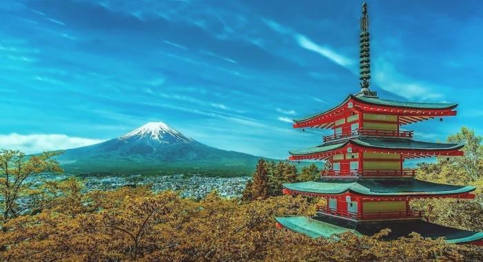 Япония начинает избавляться от навязчивого покровительства американских паразитов