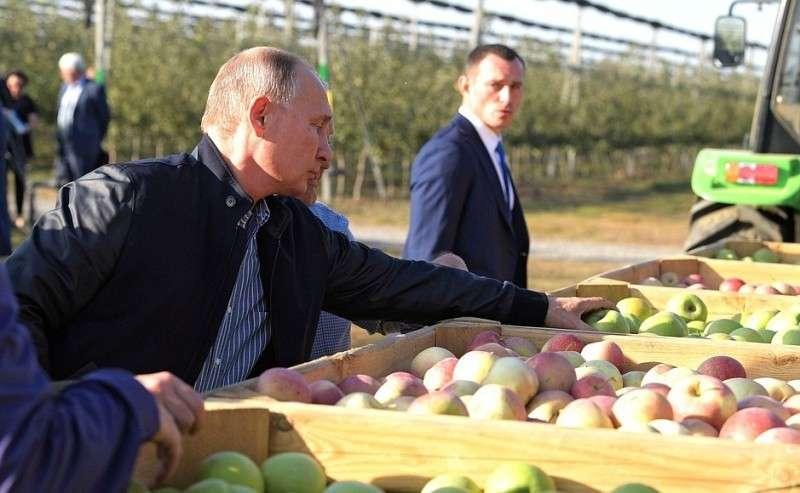 Вовремя посещения сельскохозяйственного предприятия «Рассвет».