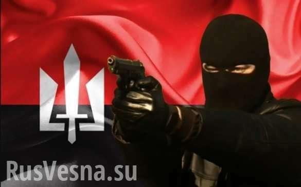 Батальоны неонацистов бегут с Донбасса, почему? | Русская весна