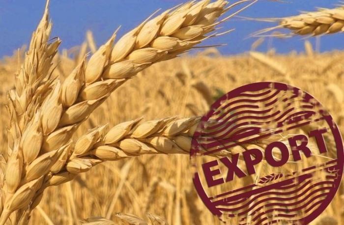 Экспорт зерна изРоссии бьет рекорды нафоне высоких цен