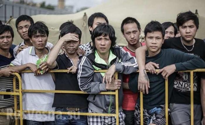 Под Киевом задержали 28 голодных вьетнамцев нелегалов
