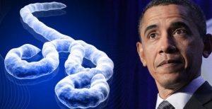 Обама начал новую военную интервенцию – теперь против вируса