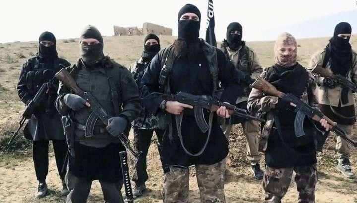Россия будет уничтожать террористов на дальних подступах, а не вести с ними переговоры
