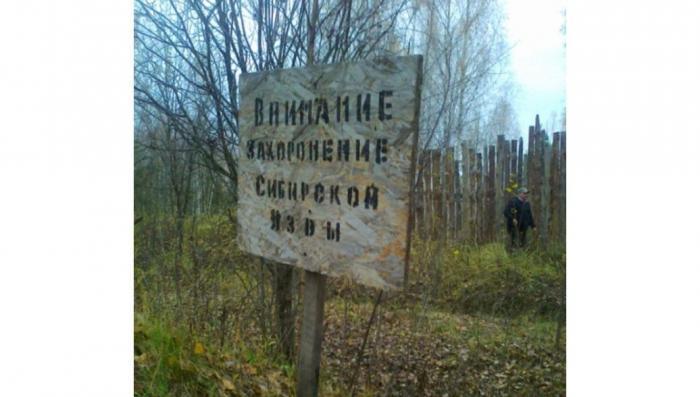 Украина. Сибирская язва из биолабораторий США