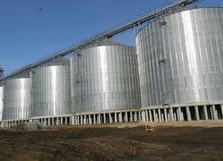 В Татарстане открылся крупнейший в Поволжье элеватор на 150 тысяч тонн зерна