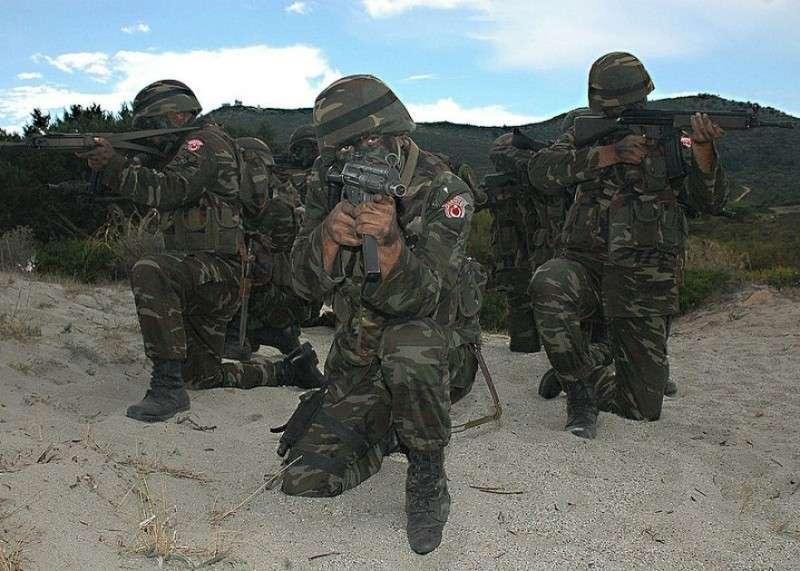 В Сирии турецкая разведка мобилизует подконтрольных боевиков на войну с курдами