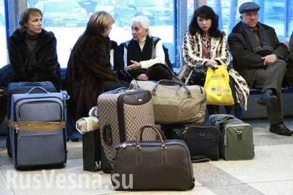Украинцы массово бегут в Россию: долой безвиз! | Русская весна