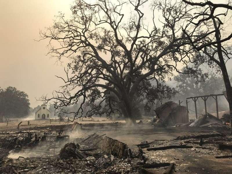 Почему США не могут решить ситуацию с беспрецедентными пожарами в Калифорнии?