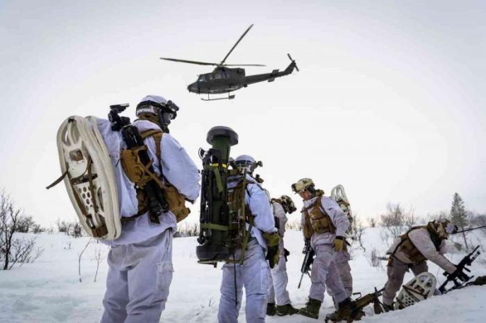 НАТО и «Единый трезубец 2018»: история всё больше смахивает на скверный анекдот