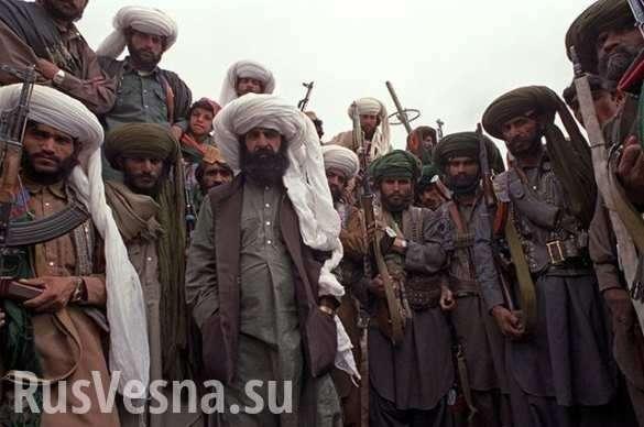 Война в Афганистане: приключения русских на реке Кокче | Русская весна