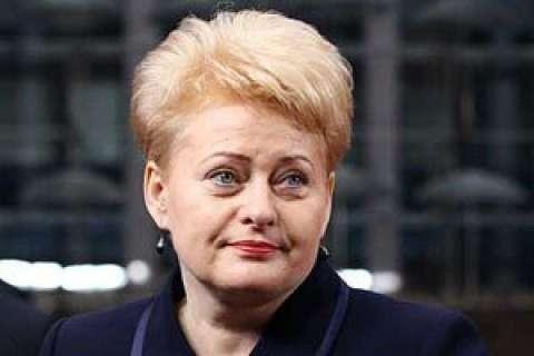 Грибаускайте не полетела отмечать «независимость» Латвии из-за неисправного самолёта