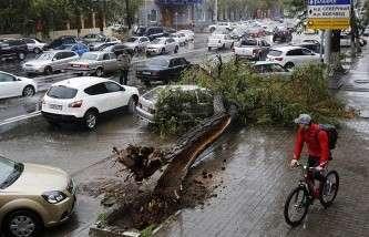 Пострадавшим от урагана жителям Ростовской области выплачено более 48 млн рублей