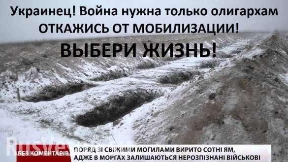 Активист майдана: трагедия Украины – в нашей никчёмности | Русская весна