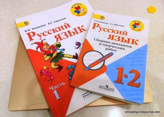 Купила сыну книгу по русскому языку. Волосы на голове встали дыбом от увиденного бреда!