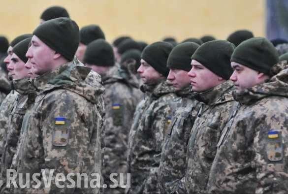 НаУкраине стартуют масштабные военные сборы (ВИДЕО) | Русская весна
