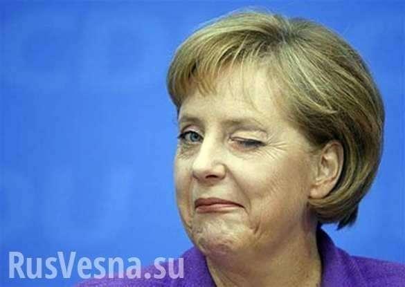 ВГермании выбрали преемника Меркель (+ФОТО) | Русская весна