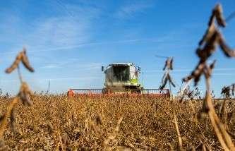 Медведев: на поддержку растениеводства в РФ в 2014 году из бюджета направят 46 млрд рублей