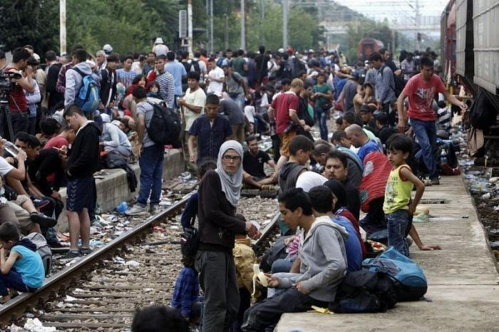 В Германии мигранты напали на полицейских