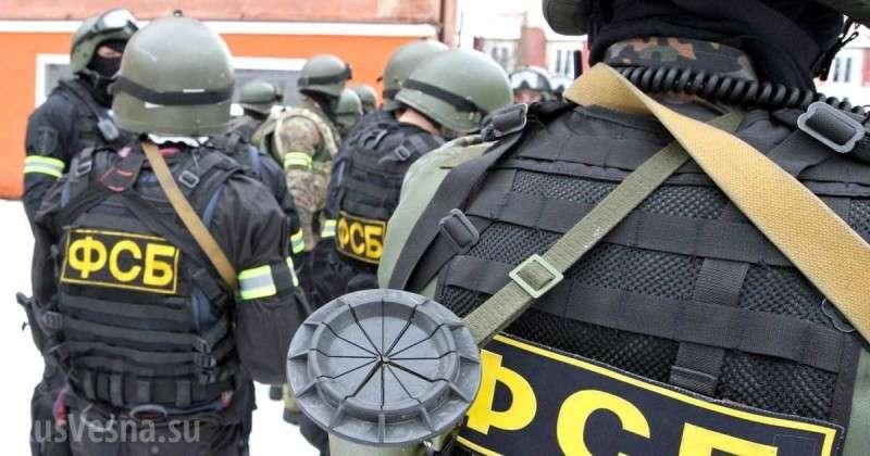 ФСБ раскрыла преступную сеть, переводившую миллионы террористам ИГИЛ