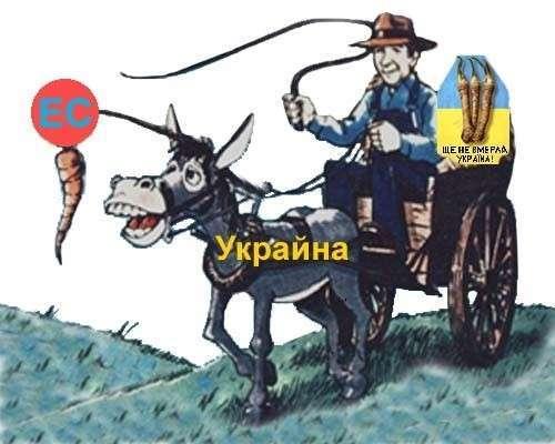 Европа – Украина: прошла любовь, завяли помидоры?
