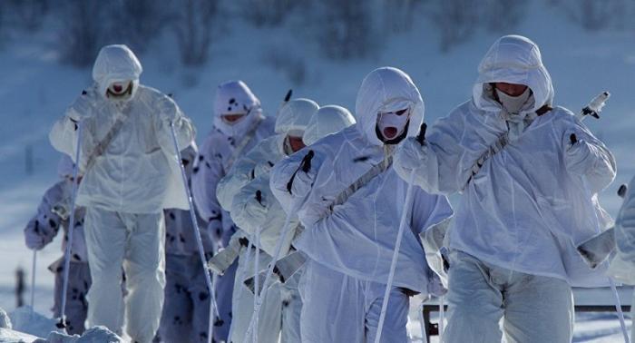 США и Британия ждут вторжения «вежливых людей» через Северный полюс