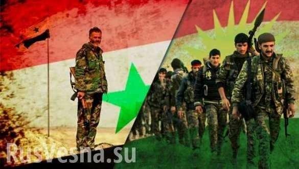 Сирия. Проамериканские курды вымаливают у Башара Асада спасения | Русская весна