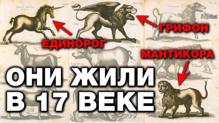Единороги и грифоны – это реальные животные. 7 мифических зверей которые существовали на самом деле