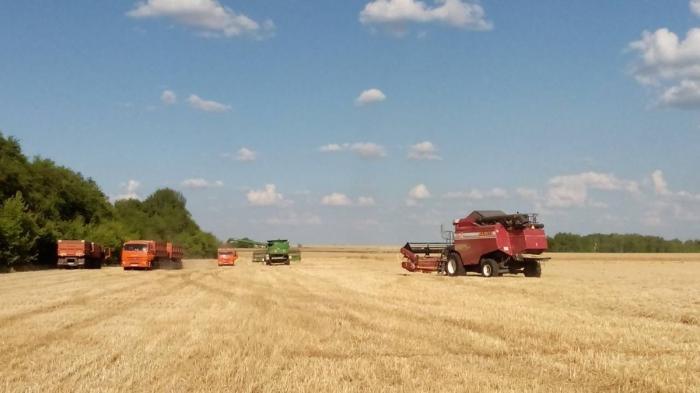 Самарский агрохолдинг «Био-Тон» ввёл воборот 14 тысяч газалежных земель в2018 году