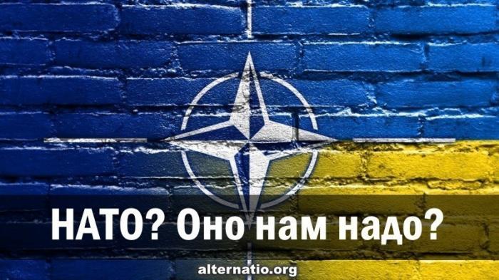 Украина в НАТО? Оно народу надо?