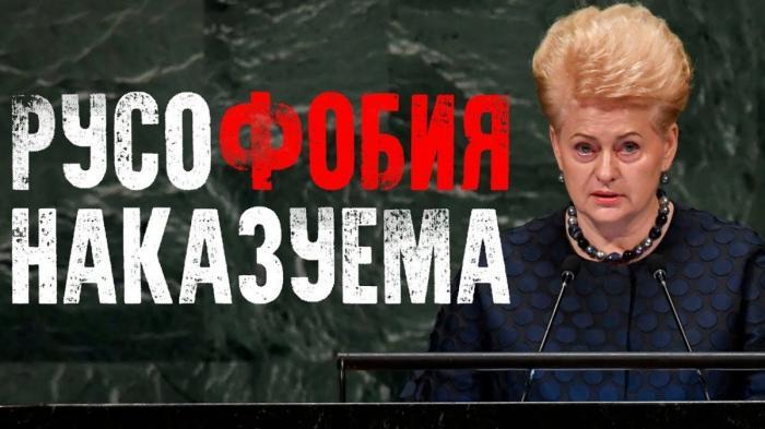 Как Россия наказывает Литву за их русофобию