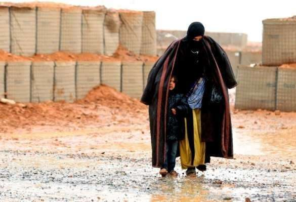 США в Сирии: наёмники, сексуальное рабство и торговля органами беженцев | Русская весна