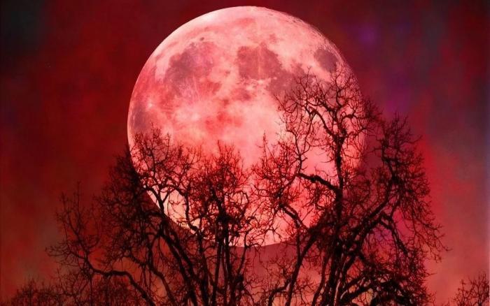 Кровавая суперлуна воссияет на небе 20 – 21 января 2019 года