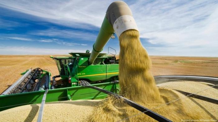 Индия вводит карательные пошлины на сельхозпродукцию из США