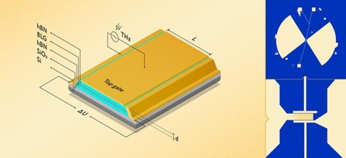 Учёные из МФТИ и МПГУ создали терагерцовый детектор наоснове волн вэлектронном море графена