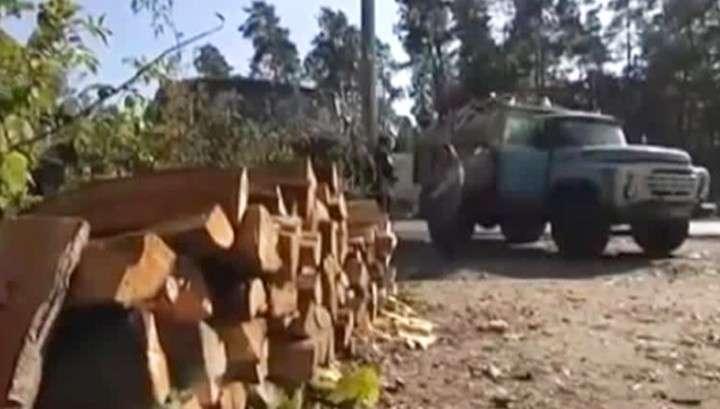 Украина готовится к зиме: цены на дрова взлетели в десять раз