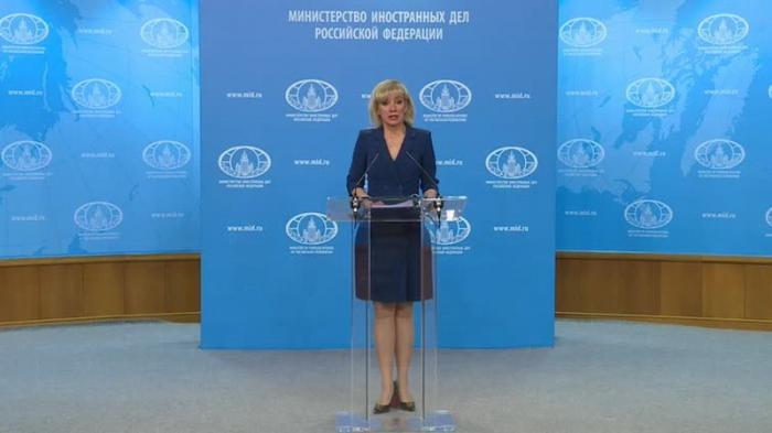 Мария Захарова провела еженедельный брифинг МИД России 23.01.2019
