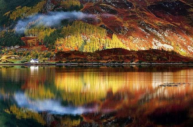 Яркие цвета осени