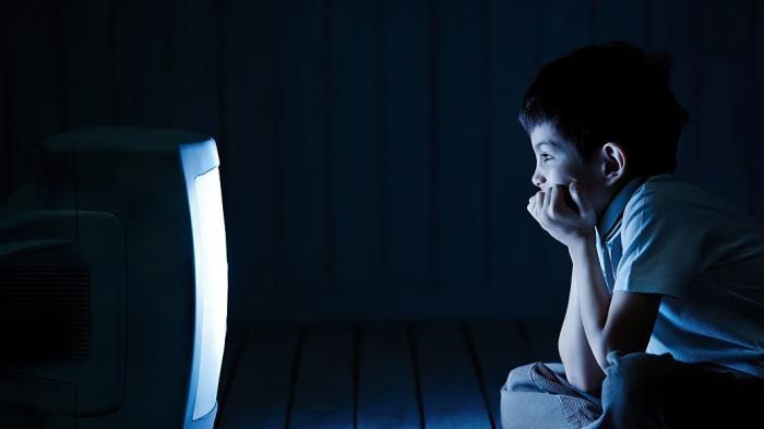 Детей зомбируют по государственному ТВ «фейк-новостями Путина»