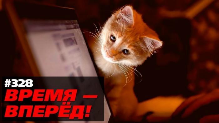 Готовимся к отключению Интернета в России. И это правильно!