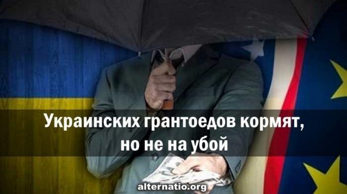 Оккупация на Украины. Грантоедов кормят, но не на убой