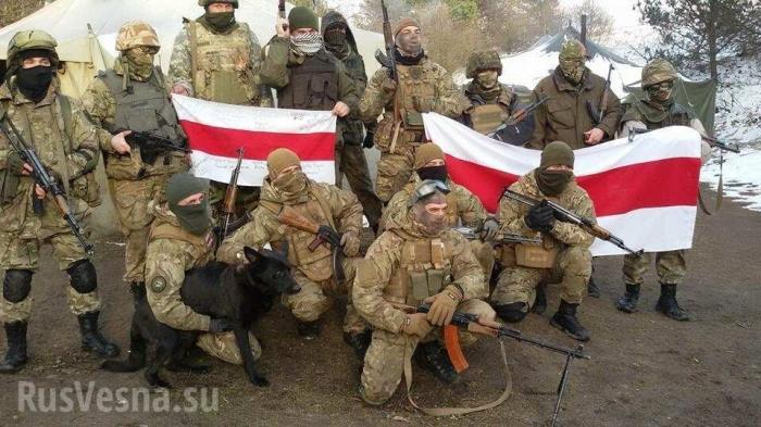 ВСУ готовят «партизан» для госпереворота в Белоруссии