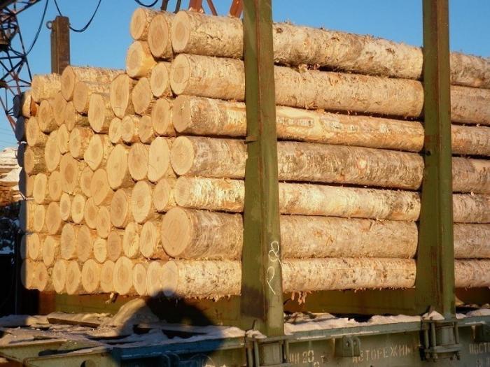 Еврокомиссия требует от Украины снять запрет на вывоз леса-кругляка