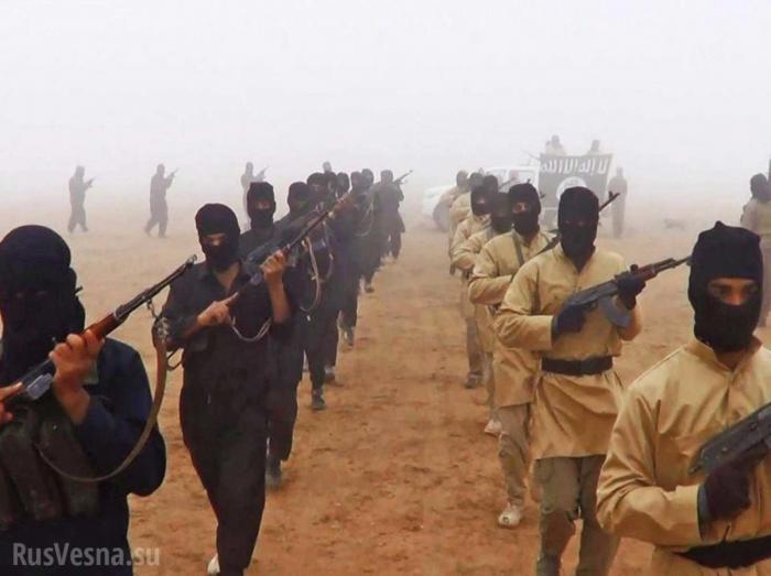 Сирия: охота на крыс – выжигают выживших боевиков