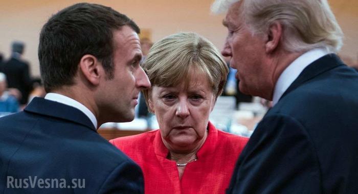 Юмор: «Что значит подхрюкивать?» – диалог-фельетон глав европейских государств