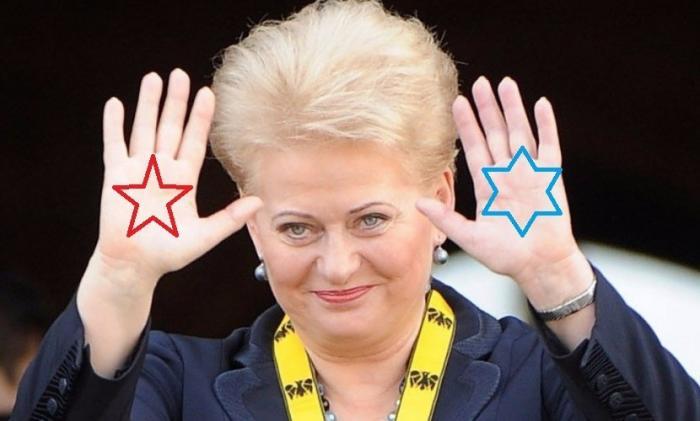 Проблемы Литвы. Это в России проблемы?