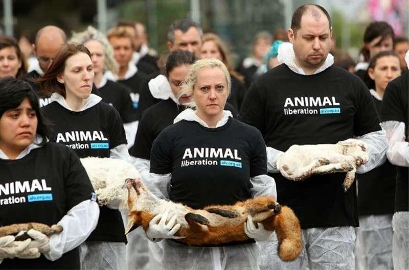 WWF – защитники животных оказались глобальной спецслужбой с кровавой историей