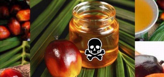 Как в России дешёвое пальмовое масло используют для фальсификации молочных продуктов