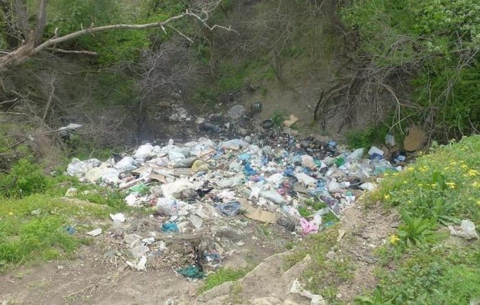 Ростовские чиновники «побороли» свалки мусора с помощью цифровых технологий